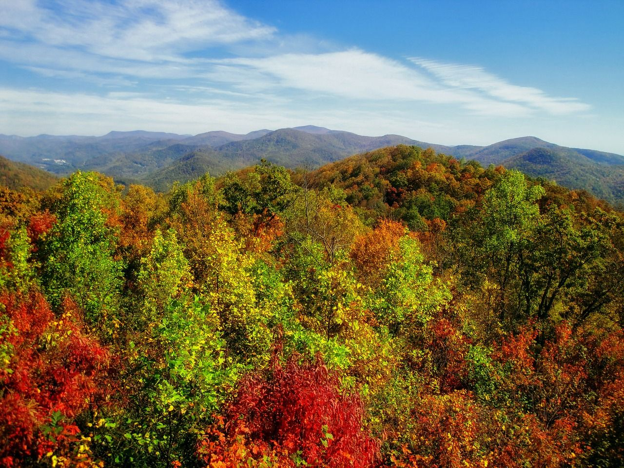 Fall Foliage Georgia Helicopter Tours